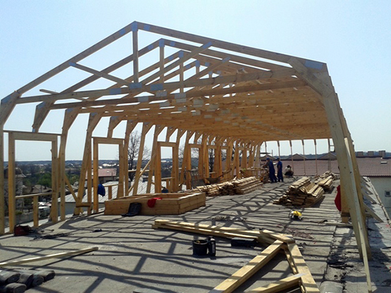 dulgherie casa mansarde lemn expo test construct