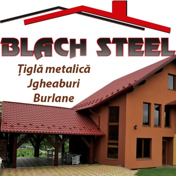 Firma Blach Steel. Descriere si informatii de contact.
